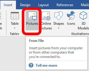 insert pictures